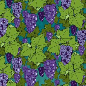 Fresh Purple Grapes - Night