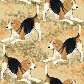 Beagle Playtime