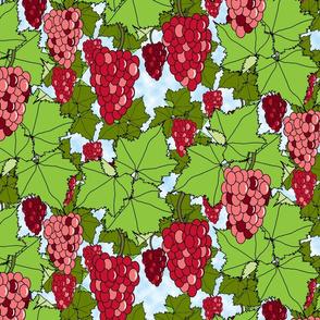 Fresh Crimson Grapes - Day