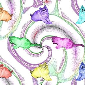 Lollipop Kittens