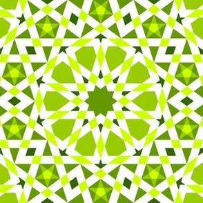 04406886 : UA5Vplus : verdant