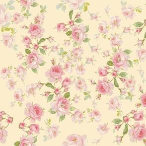 Saint Colette June Roses on buttercup yellow