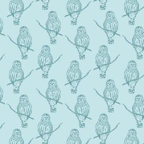 Sir Oswald Owl in Light Blue