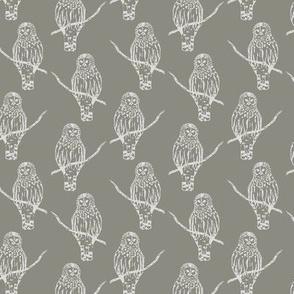 Sir Oswald Owl in Gray