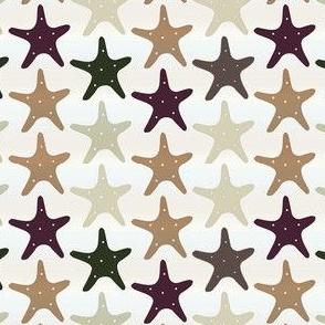 Sandy Starfishes