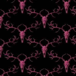 DigSkullery ~ Pink on Black