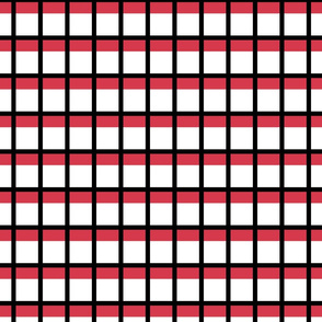 Le Cirque ~ Framboise Red and Black Check on White