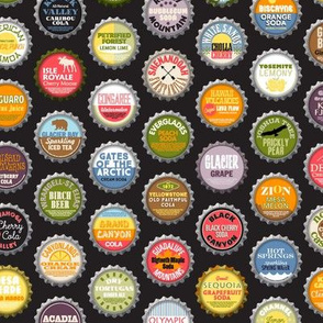 Soda Nation (Cola) || bottlecap bottle cap national park America United States nps polka dots typography cola travel summer food drink vacation