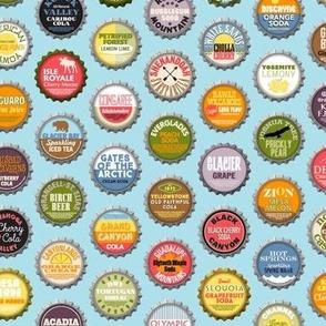 Soda Nation (Blue Raspberry) || bottlecap bottle cap national park America United States nps polka dots typography cola travel summer food drink vacation