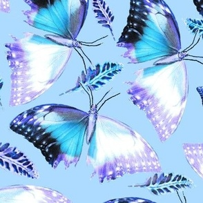 Turquoise Butterflies