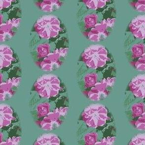 Light Green Vintage Rose