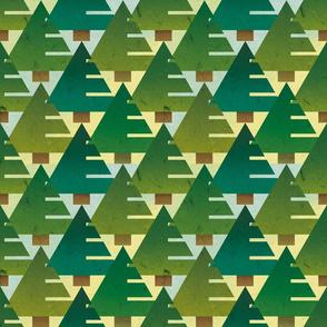 fir trees park