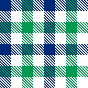 Navy & Green Gingham Plaid