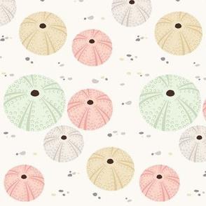 Pastel Sea Urchins