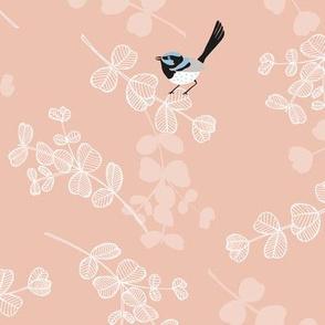 Blue Wrens - Blush