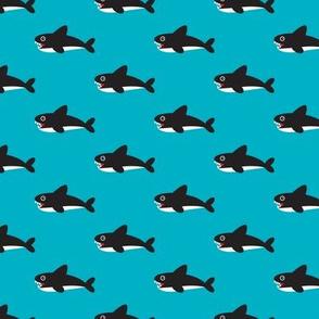 Cute blue baby shark australian theme fish illustration in retro colors for kids
