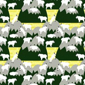 Mountain Goat Jamboree