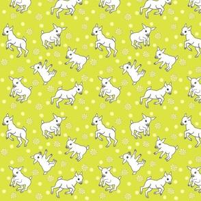 Little Goats Play