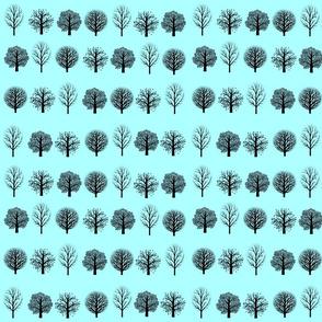 Black Trees, Aqua Sky
