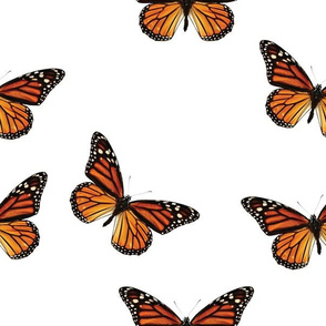 Botanical Butterfly, Monarch