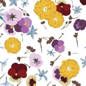 Edible Flowers 2