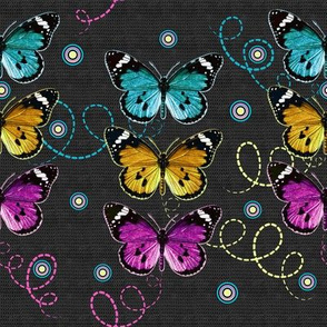 3 colorful butterflies