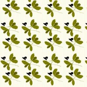 SHADOW BUTTERFLIES LEAVES ORANGE STRIPES