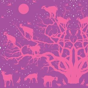 argan tree - pink