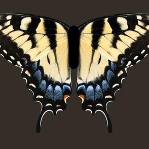 Oversized Swallowtail One Piece