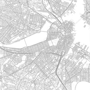 Boston map drawing *blanket sized*