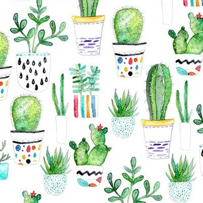 Watercolour Succulents, Cactus