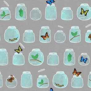 Butterflies in Jars