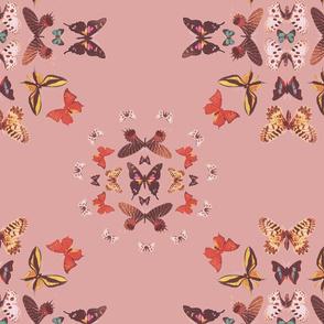pinkbacka