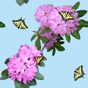 Butterflies_and_Rhododendrons_B