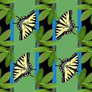 butterfly_stripe_2_plus_leaves