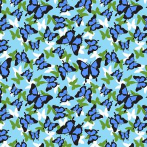 Ulysses_blue