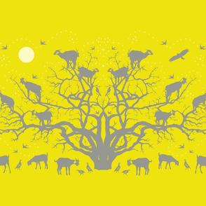 argan tree - FAT QUARTER