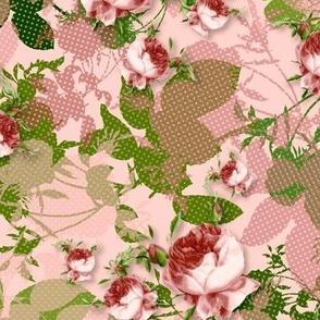 Rosa Centifolia Coordinate