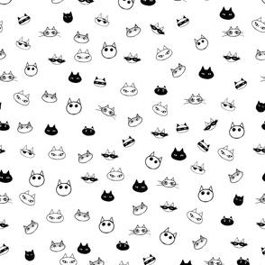 Cat Faces black n white
