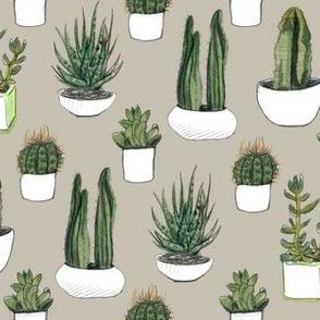 Watercolor Cacti & Succulents on Beige