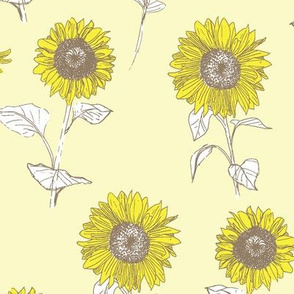 A Day of Sunflowers