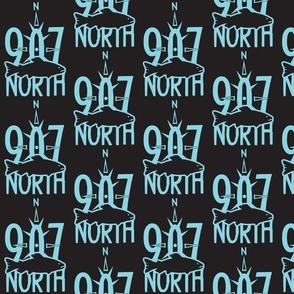 907NorthSalmonBlueBlack