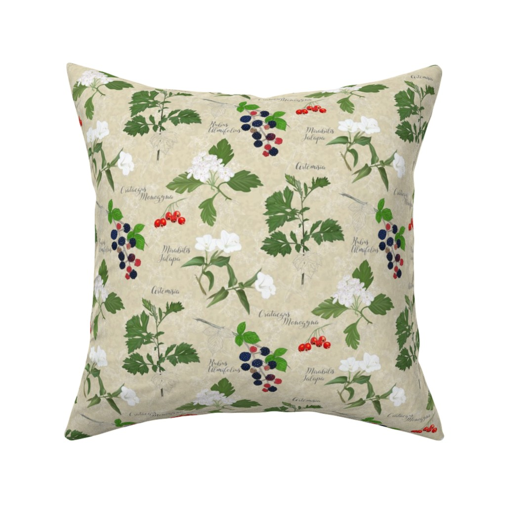 Catalan Throw Pillow featuring Botanical_Sketchbook: Flowers and fruits by mia_valdez