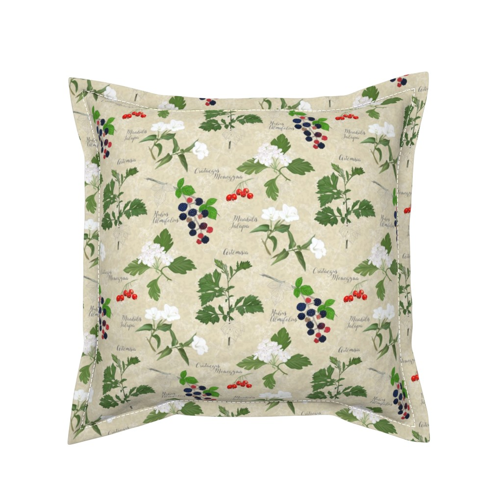 Serama Throw Pillow featuring Botanical_Sketchbook: Flowers and fruits by mia_valdez
