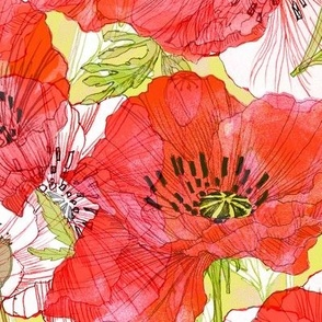 Romance Poppies Botanical Sketchbook