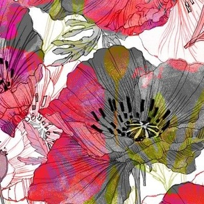 Romance Poppies Mod Colors Botanical