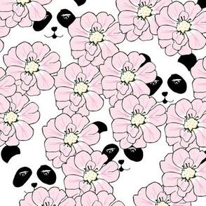 peekaboo panda - by MiaMea