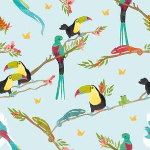 Tropical Bird Jungle - tucan & chameleon