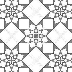 04540244 : S84V2V1 X squares : D