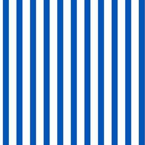 Popcorn Stripe (picnic blue, large)